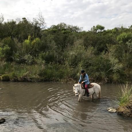 horse riding in Uruguay.jpg