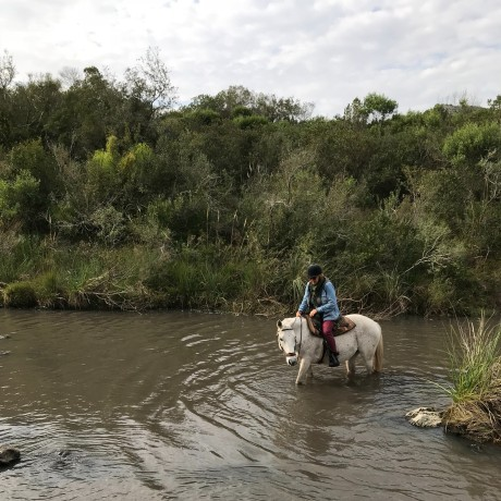 horse riding in Uruguay.jpg
